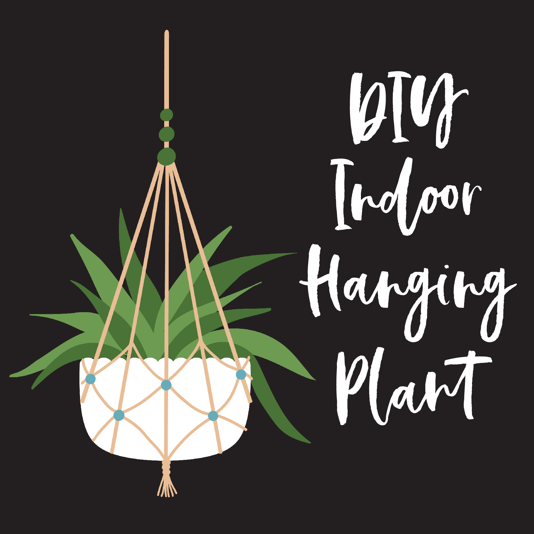 20 Minute DIY Classroom Hanging Plant | DIY Indoor Hanging Planter